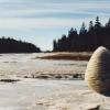 MERCREDI 27 MAI 2015 à 20 h ▶ Rivers and tides, Andy Goldsworthy et l'œuvre du temps