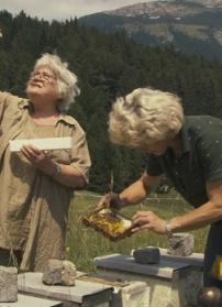 MERCREDI 24 JUIN 2015 à 20 h ▶ Des abeilles et des hommes, de Markus Imhoof