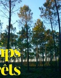MERCREDI 9 OCTOBRE 2019 à 20 h : Le Temps des forêts, de François-Xavier Drouet