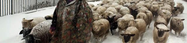 JEUDI 19 DECEMBRE 2013 à 20 H ▶ Hiver nomade, de Manuel von Stürler